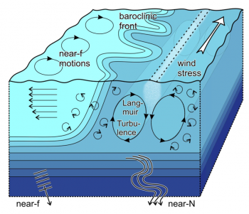Surface-layer processes in the vicinity of a front