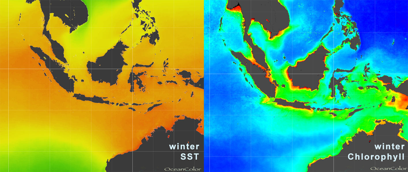 tl_files/staff/stottmeister/images/climatology-winter-SST_Chl.jpg